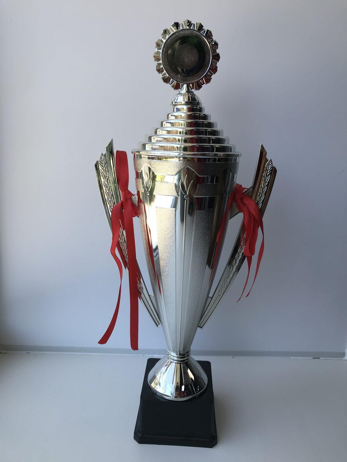 Кубок большой - серебро  5005S - 1