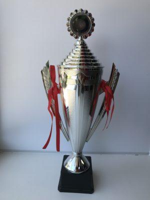 Кубок большой - серебро  5005S - 9