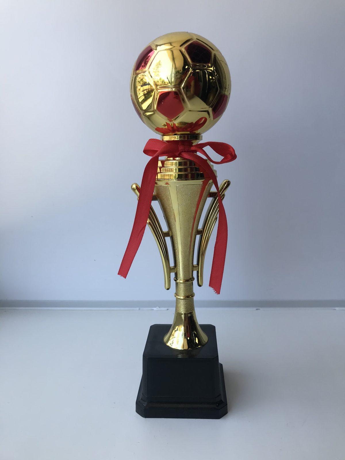 Кубок наградной  D95C - 1