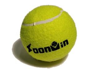 SPRINTER Мяч для большого тенниса  S00P3 - 2